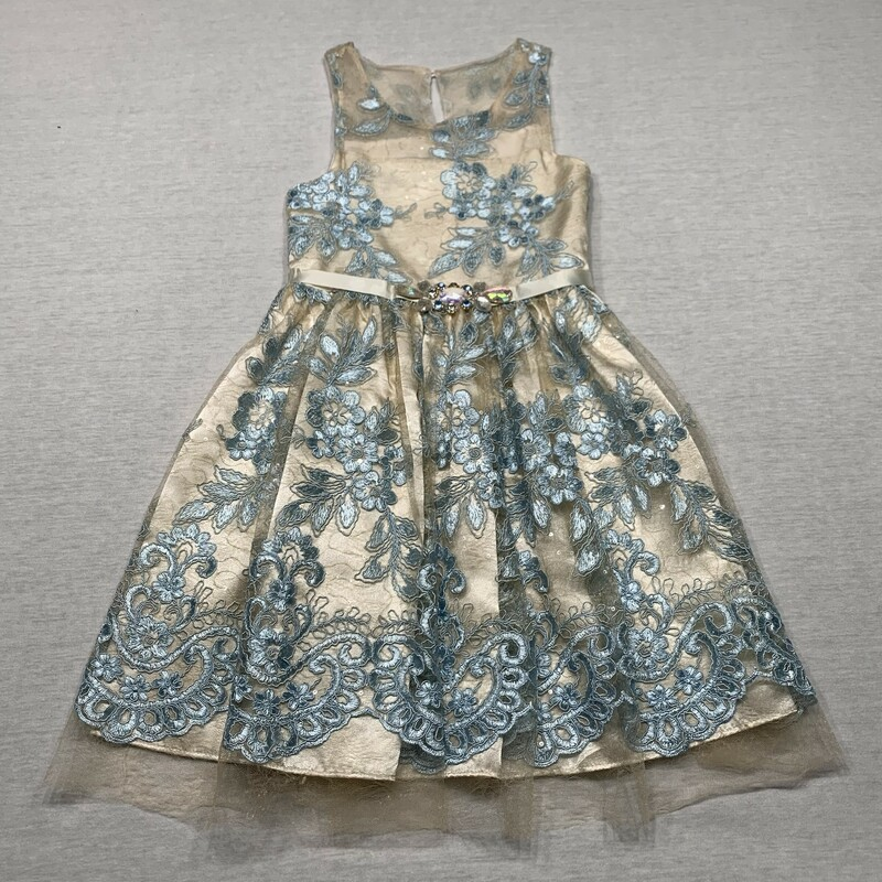 Lace/embroidered Dress