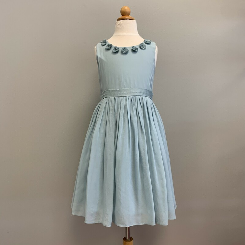 Silk Dress & Pettiskirt