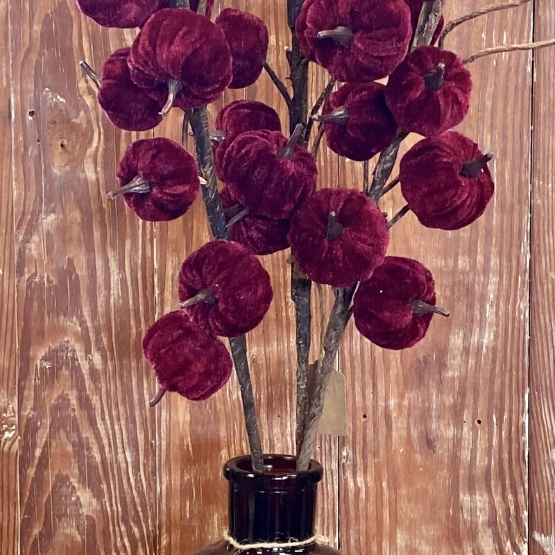 """These beautiful  velvet burgundy pumpkin stems are 26"""" in length with a natural wrapped stem.  Perfect for your fall decor"""