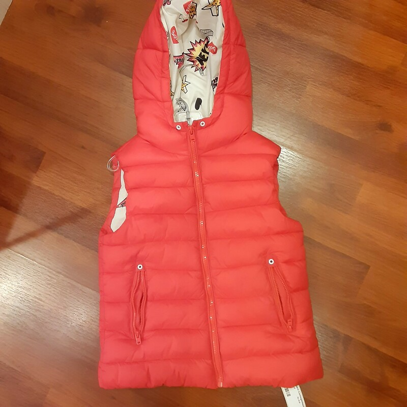 *Zara Puffer Vest