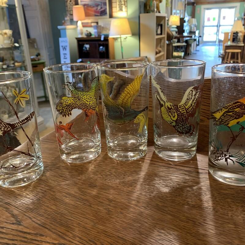 5 Vtg Bird Glasses