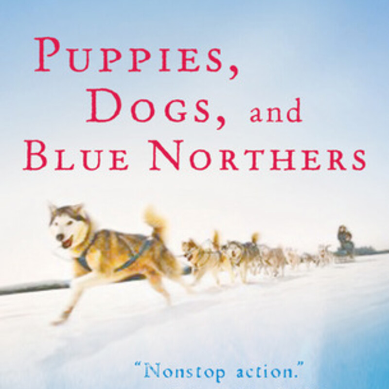 Puppies Dogs And Blue Nor