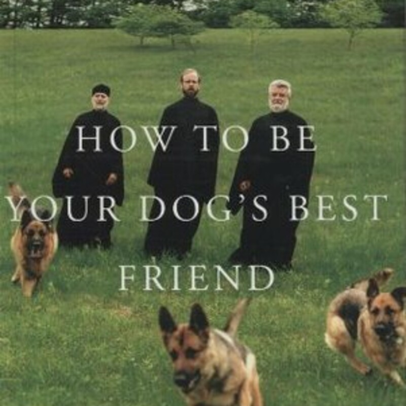 How To Be Your Dogs