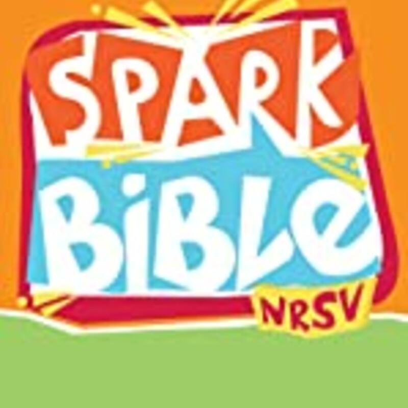 Kids Spark NRSV Bible