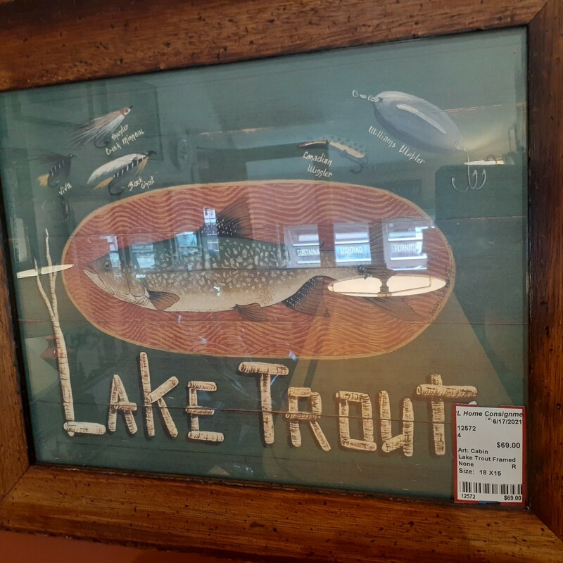 Lake Trout Framed