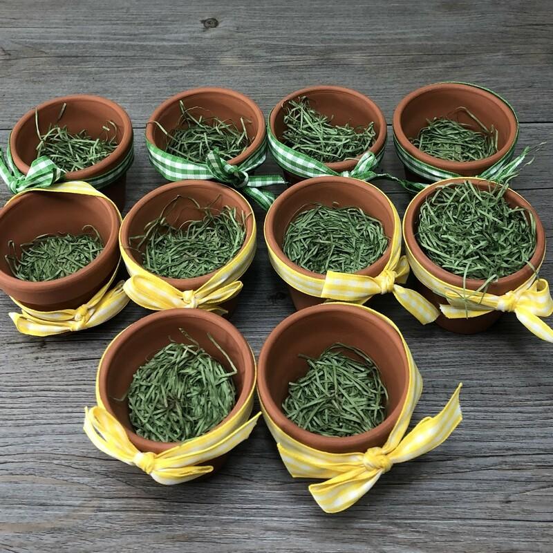 Miniature Clay Pots