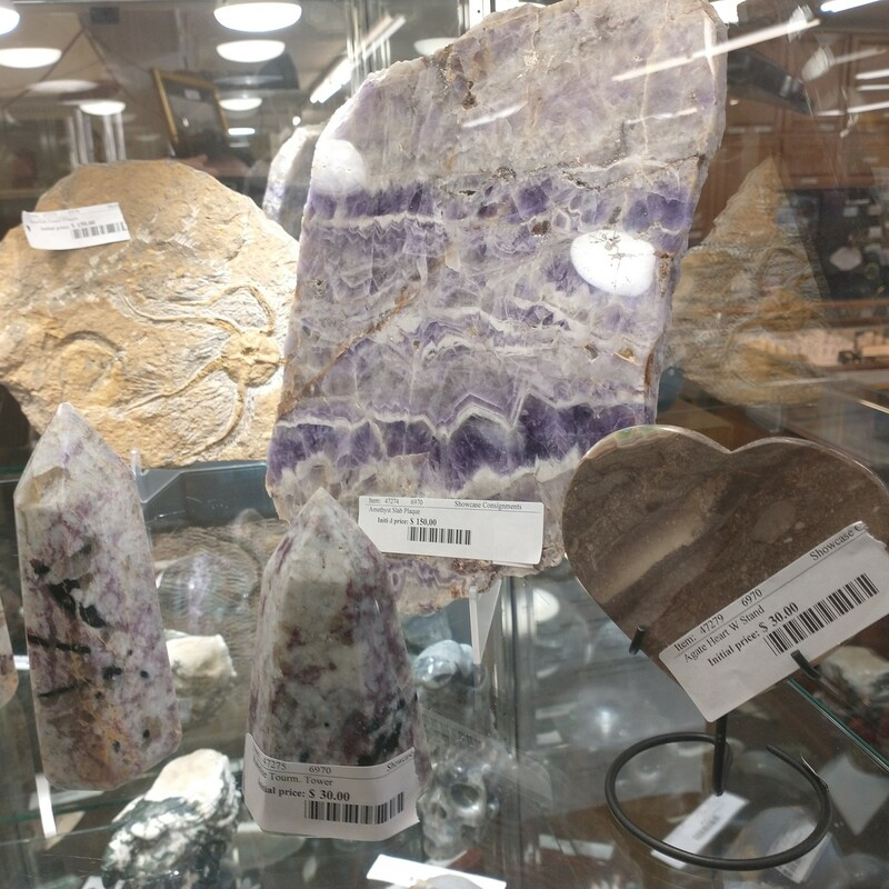 Starfish Fossil Plaque