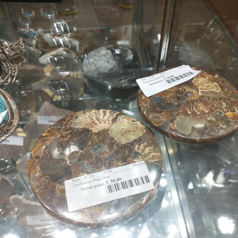 Ammonite Plate Disc