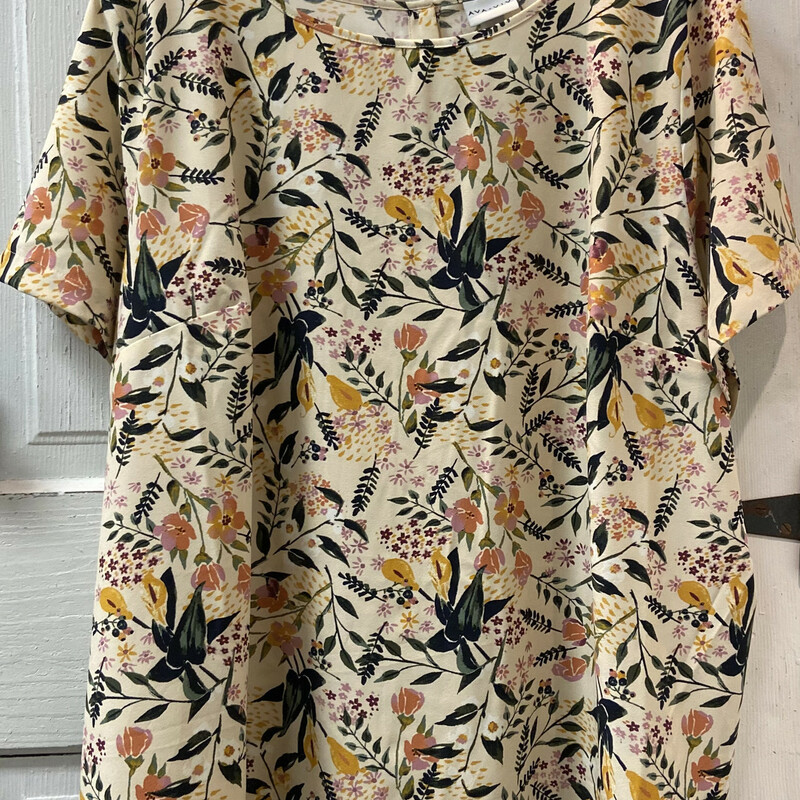 NWT Crm Floral Button Top